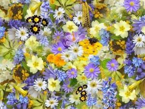 Springflowers110671__340